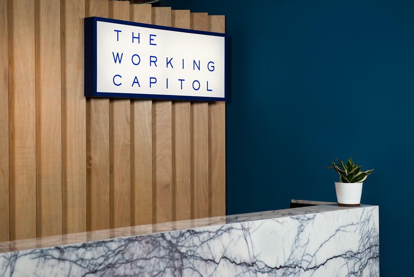 ����� ����� ����� �������� ����� the-working-capitol-